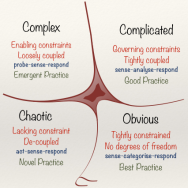 Cynefin describes systems as complex, complicatedm chaotic, obvious, or disorderly.